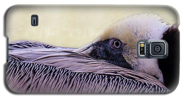 Pelican Connection 2 Galaxy S5 Case