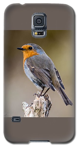 Perching Galaxy S5 Case by Torbjorn Swenelius