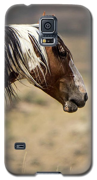 Picasso Of Sand Wash Basin Galaxy S5 Case by Nadja Rider