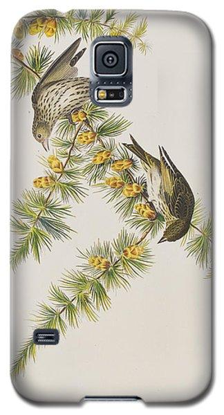 Pine Finch Galaxy S5 Case by John James Audubon