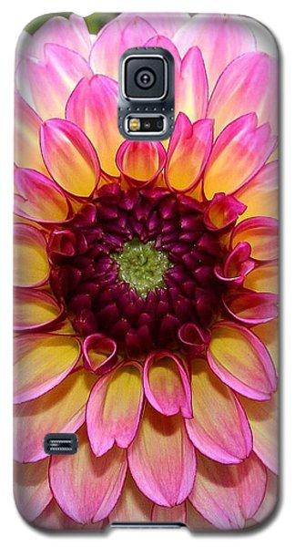 Pink Dahlia Galaxy S5 Case