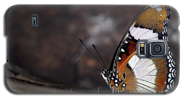 Plain Tiger Butterfly Galaxy S5 Case