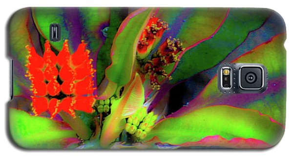 Plants And Flowers In Hawaii Galaxy S5 Case