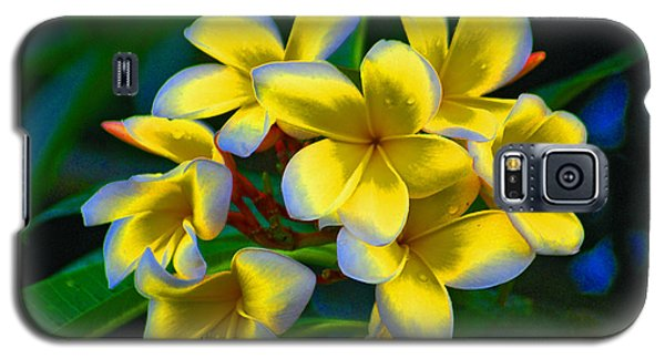 Galaxy S5 Case featuring the photograph 1- Plumeria Perfection by Joseph Keane