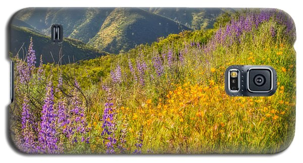 Poppies And Lupine Galaxy S5 Case
