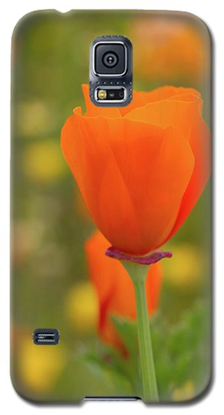 Galaxy S5 Case featuring the photograph Poppy by Roger Mullenhour