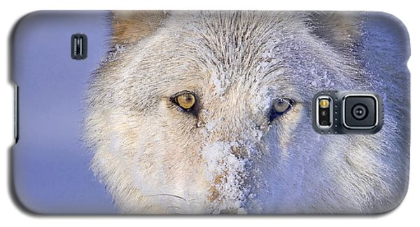 Portrait Of The White Wolf 540f Galaxy S5 Case