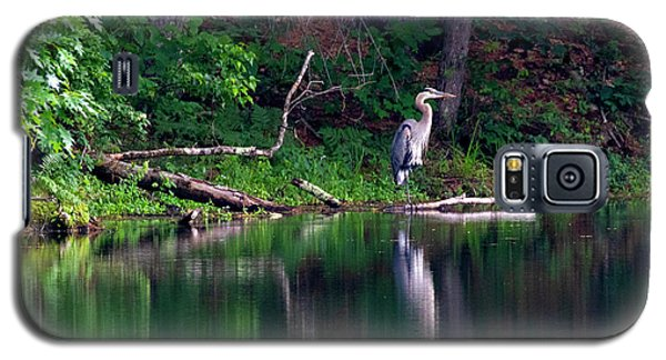 Posing Great Blue Heron  Galaxy S5 Case