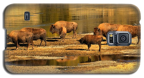 Galaxy S5 Case featuring the photograph Gathering To Cross The Yellowstone River by Adam Jewell