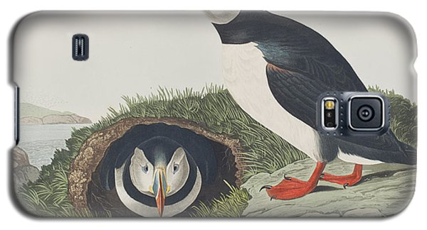 Puffin Galaxy S5 Case