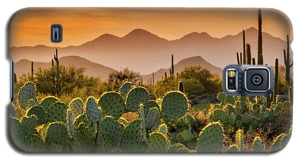 Pure Sonoran Gold  Galaxy S5 Case