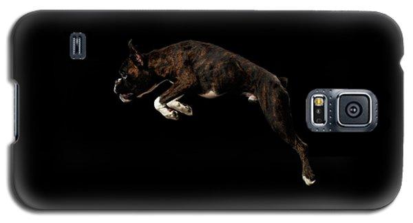 Dog Galaxy S5 Case - Purebred Boxer Dog Isolated On Black Background by Sergey Taran