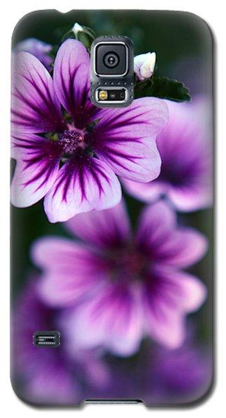 Purple Beauties Galaxy S5 Case