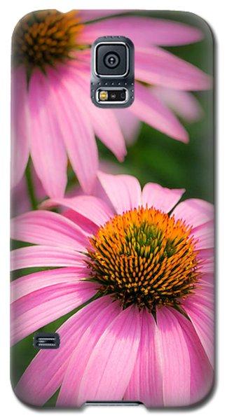 Purple Coneflower Galaxy S5 Case by Jim Hughes
