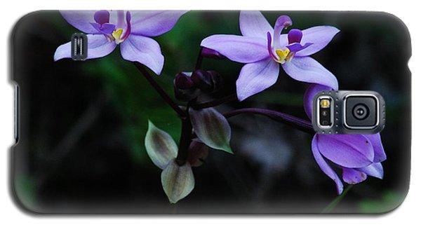Purple Orchids 2 Galaxy S5 Case