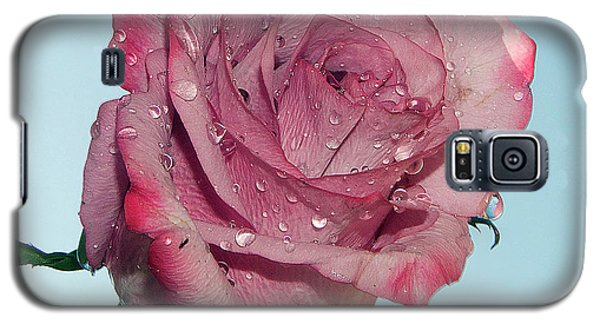 Galaxy S5 Case featuring the photograph Purple Rose by Elvira Ladocki