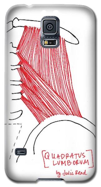 Quadratus Lumborum Galaxy S5 Case