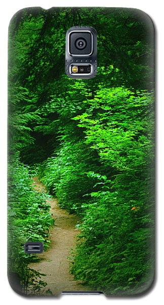 Rain Forest Walk Galaxy S5 Case