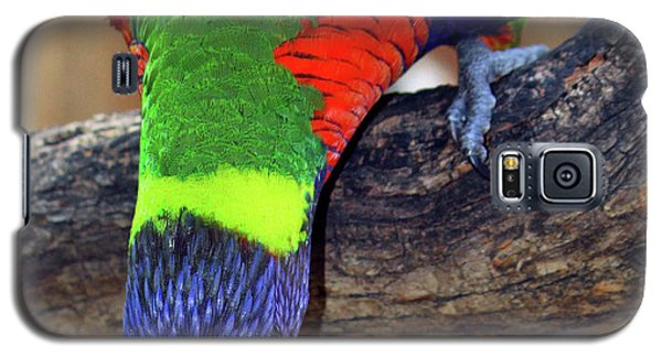 Rainbow Lorikeet Galaxy S5 Case