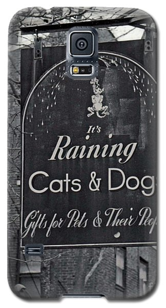 Galaxy S5 Case featuring the photograph Raining Cats And Dogs by Juls Adams