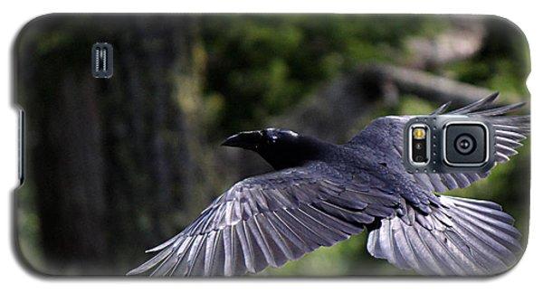 Raven Flight Galaxy S5 Case