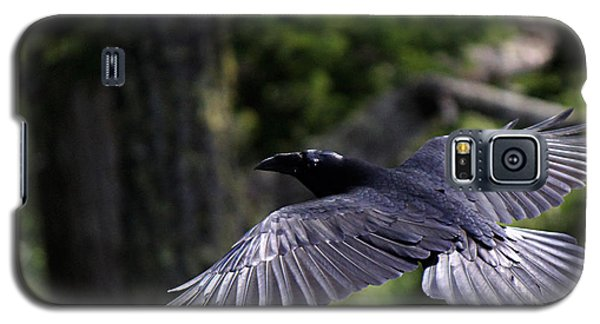 Raven Flight Galaxy S5 Case