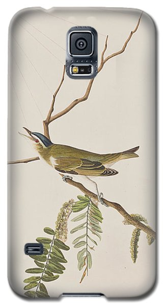 Red Eyed Vireo Galaxy S5 Case