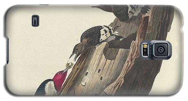 Red-headed Woodpecker Galaxy S5 Case