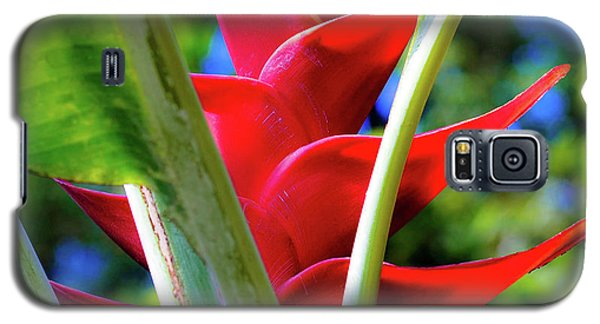 Red Heliconia Hawaii Galaxy S5 Case