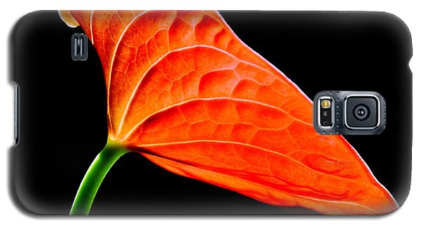 red Lily blossom Galaxy S5 Case by Werner Lehmann