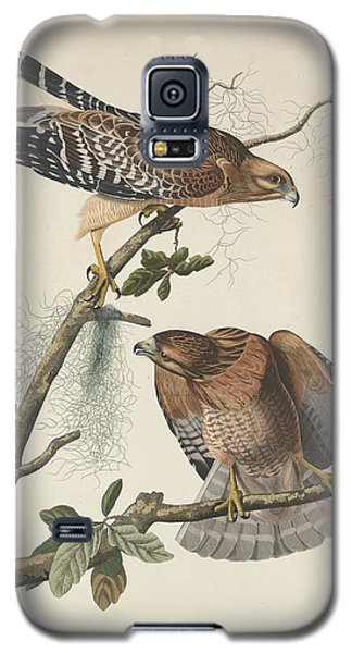 Red Shouldered Hawk Galaxy S5 Case by Dreyer Wildlife Print Collections