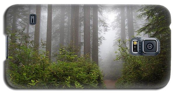 Redwood Grove Galaxy S5 Case