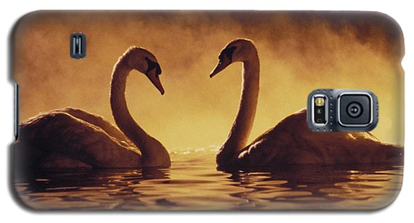 Romantic African Swans Galaxy S5 Case by Brent Black - Printscapes