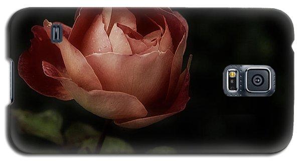 Romantic November Rose Galaxy S5 Case