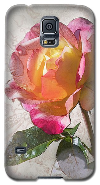 Rosa, 'glowing Peace' Galaxy S5 Case