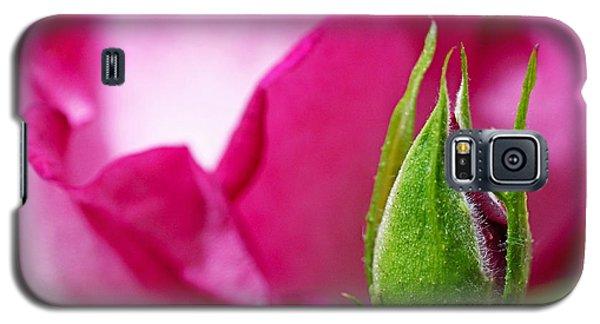 Budding Rose Galaxy S5 Case