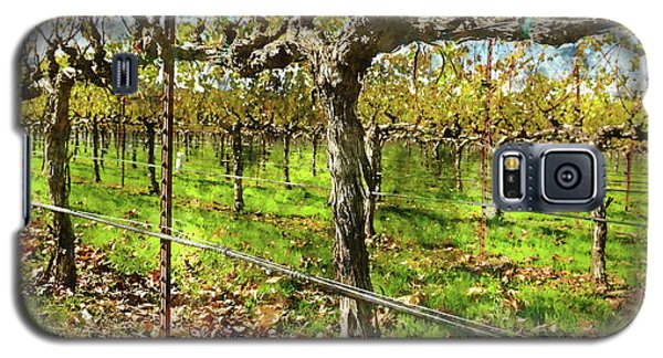 Rows Of Grapevines In Napa Valley Caliofnia Galaxy S5 Case