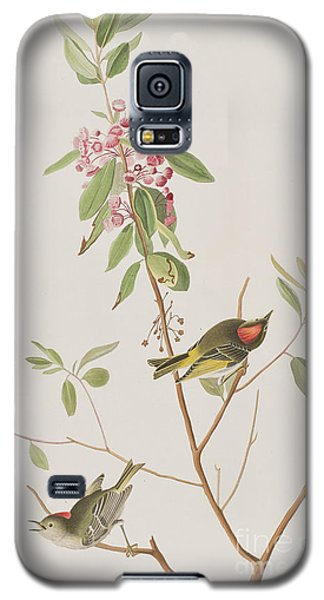 Ruby Crowned Wren Galaxy S5 Case by John James Audubon
