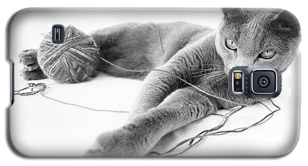 Cats Galaxy S5 Case - Russian Blue by Nailia Schwarz