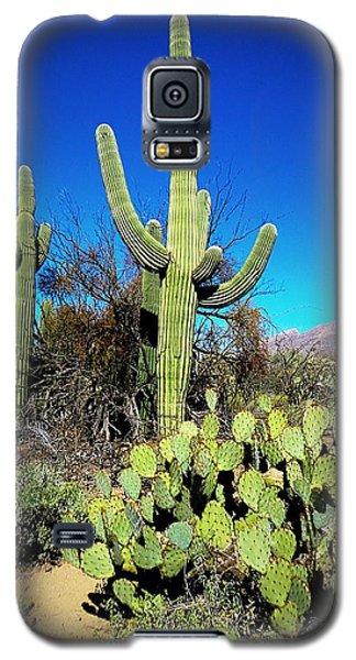 Sabino Canyon Galaxy S5 Case