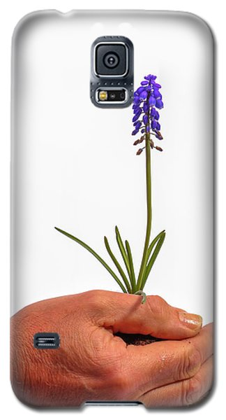 Safely Growing Galaxy S5 Case