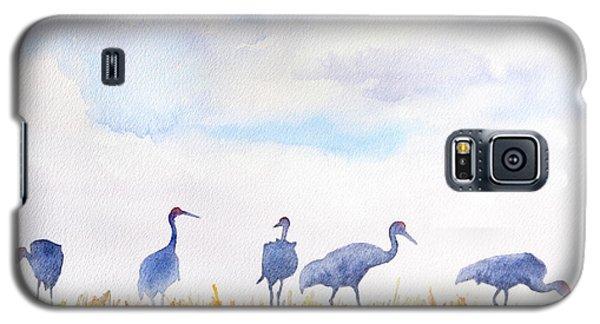 Sandhill Skyline Galaxy S5 Case