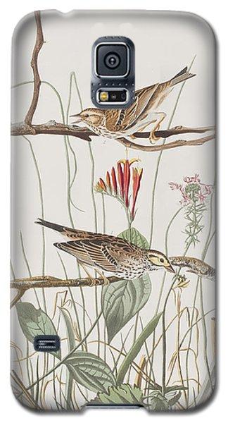 Savannah Finch Galaxy S5 Case by John James Audubon