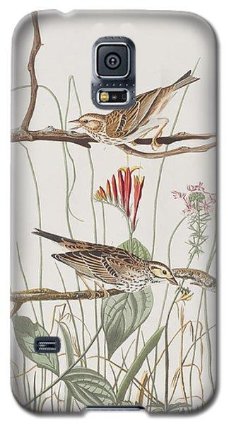 Savannah Finch Galaxy S5 Case