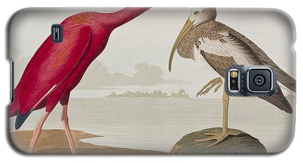 Scarlet Ibis Galaxy S5 Case by John James Audubon