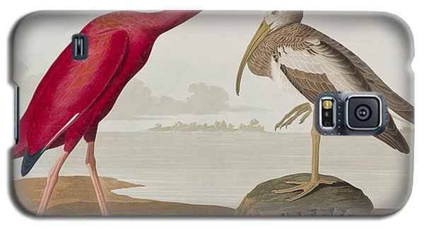Scarlet Ibis Galaxy S5 Case by John James Audubon