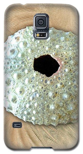 Galaxy S5 Case featuring the photograph Sea Urchin by Anastasiya Malakhova