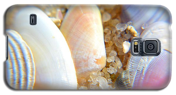 Galaxy S5 Case featuring the photograph Seashells by Janice Spivey