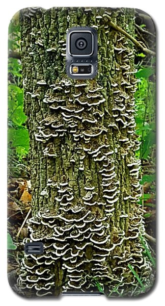 Shrooms Galaxy S5 Case