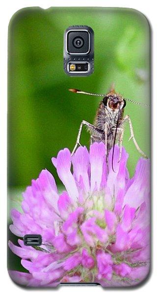 Skipper Galaxy S5 Case